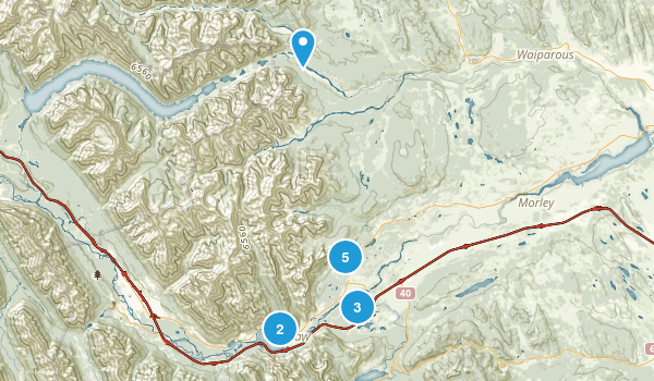 Bighorn No 8, Alberta Nature Trips Map