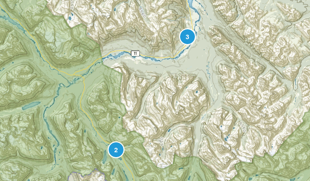 Cline River, Alberta Forest Map