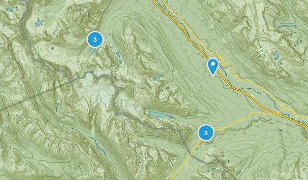 Eldon, Alberta Dogs On Leash Map