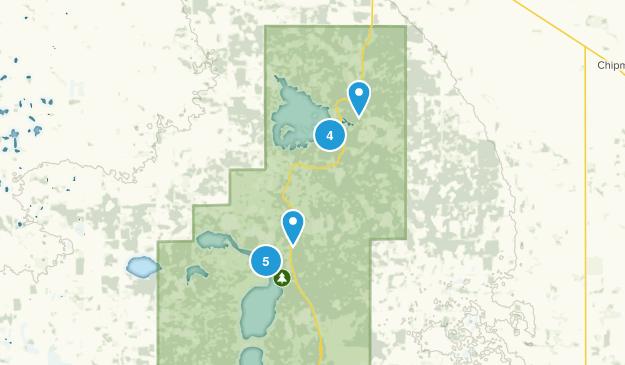Improvement District No. 13 , Alberta Forest Map