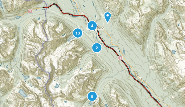 Lake Louise, Alberta Dogs On Leash Map