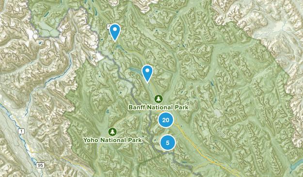 Best Dogs On Leash Trails near Lake Louise, Alberta, Canada | AllTrails