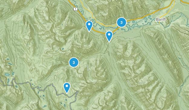 Sawback, Alberta Birding Map
