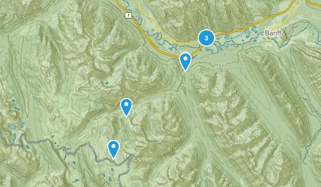 Sawback, Alberta Nature Trips Map