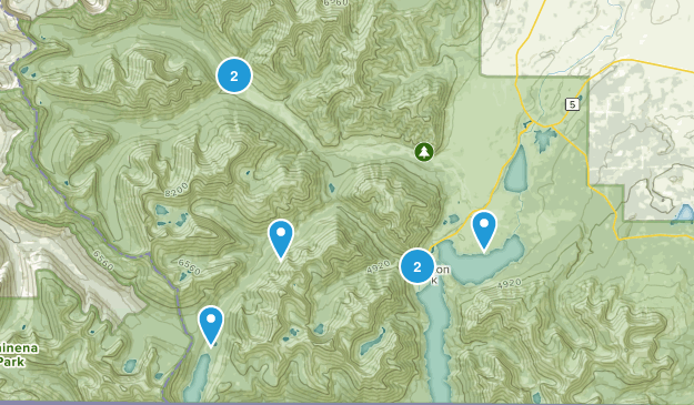 Waterton, Alberta Birding Map