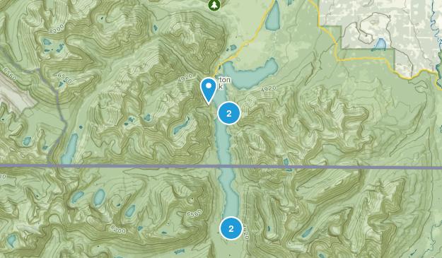 Waterton Park, Alberta Birding Map