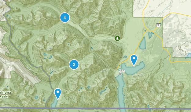 Waterton, Alberta River Map