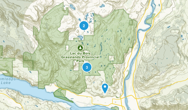 Brocklehurst, British Columbia Dog Friendly Map