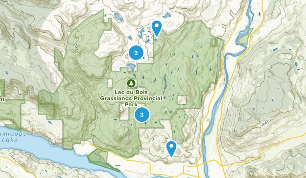 Brocklehurst, British Columbia Walking Map