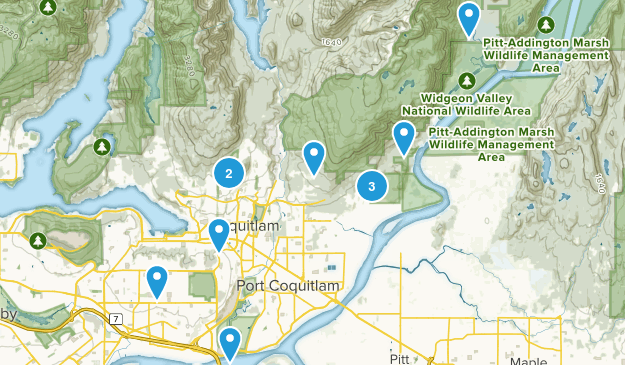 Coquitlam, British Columbia Dogs On Leash Map