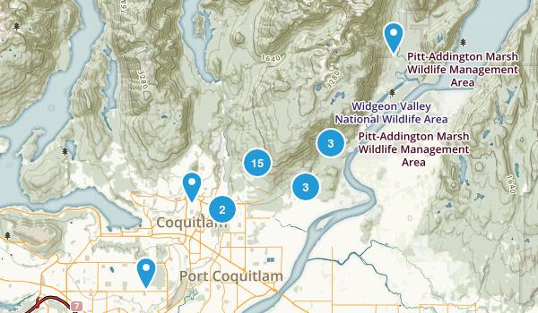 Coquitlam, British Columbia Forest Map
