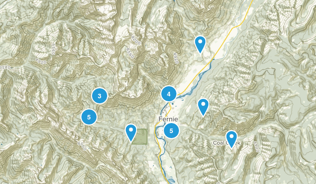 Fernie, British Columbia Birding Map