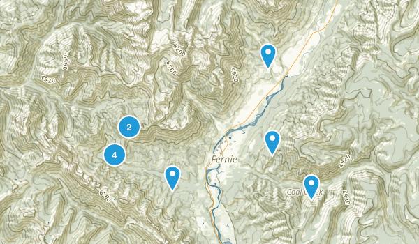 Fernie, British Columbia Dog Friendly Map