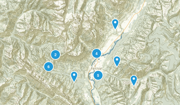 Fernie, British Columbia Nature Trips Map