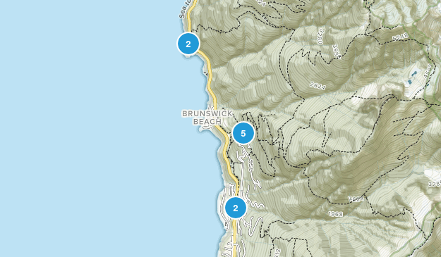 Lions Bay, British Columbia Forest Map