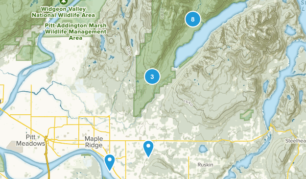 Maple Ridge, British Columbia Dogs On Leash Map