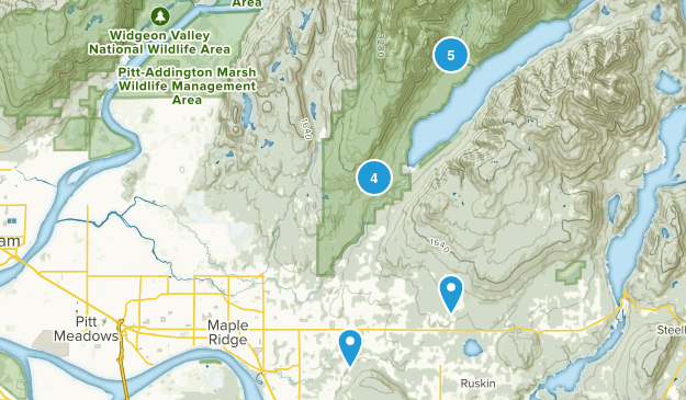 Maple Ridge, British Columbia Wild Flowers Map