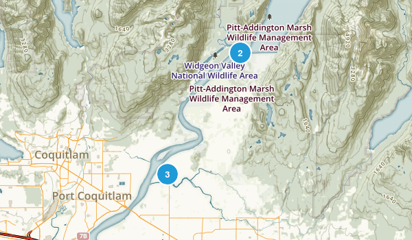 Pitt Meadows, British Columbia Birding Map