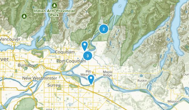 Pitt Meadows, British Columbia Dogs On Leash Map
