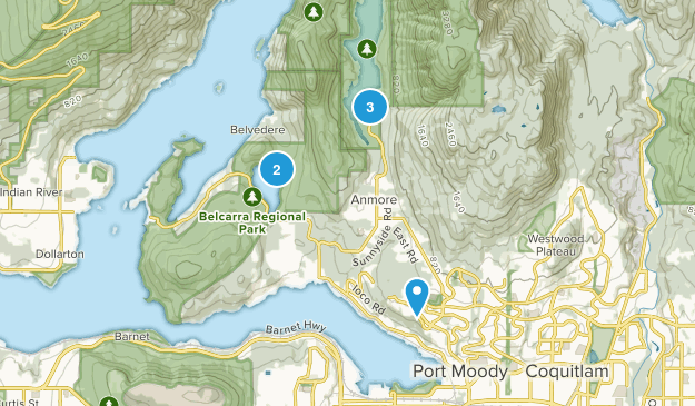 Port Moody, British Columbia Forest Map