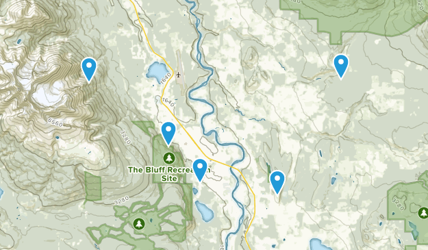 Smithers, British Columbia Dogs On Leash Map