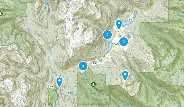 Whistler, British Columbia Dogs On Leash Map