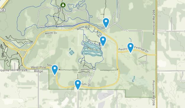 Pine Ridge, Manitoba Dogs On Leash Map