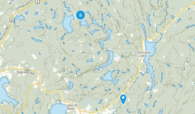 Lake of Bays, Ontario Forest Map