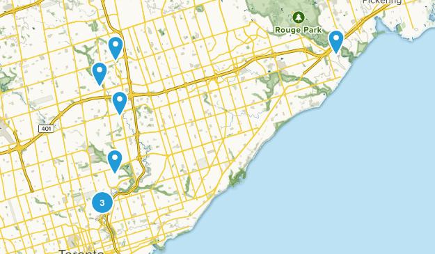 Toronto, Ontario Wild Flowers Map