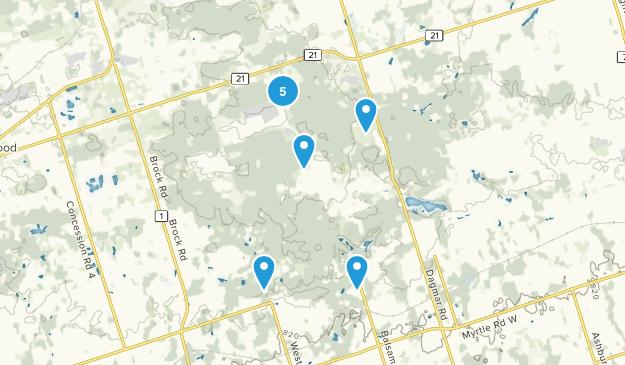 Uxbridge, Ontario Dogs On Leash Map