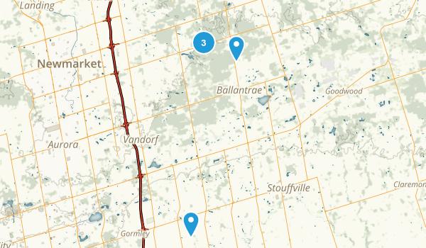 Whitchurch-Stouffville, Ontario Walking Map
