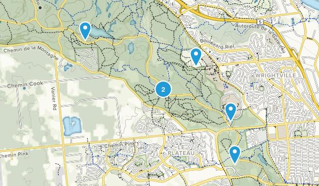 Gatineau, Quebec Wild Flowers Map