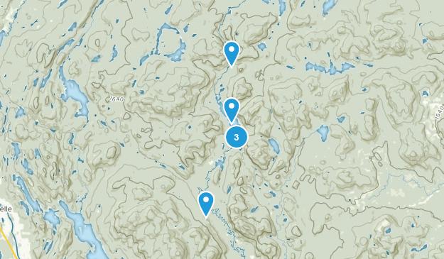 Lac-Supérieur, Quebec Forest Map