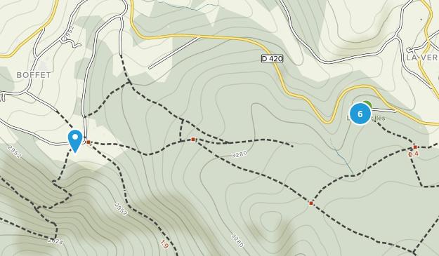 Saint-Nicolas-Des-Biefs, Auvergne-Rhône-Alpes Forest Map