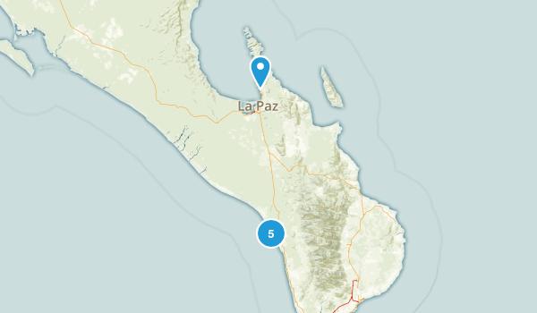 La Paz, Baja California Sur Dog Friendly Map