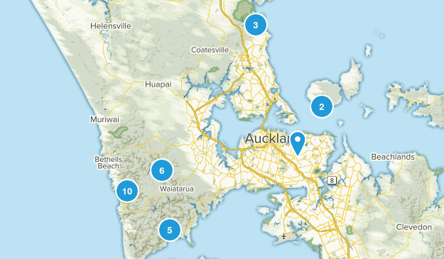 Auckland, Auckland Region Birding Map