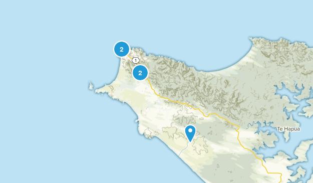 Cape Reinga, Northland Region Birding Map
