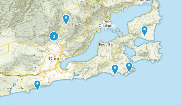 Dunedin, Otago Bird Watching Map
