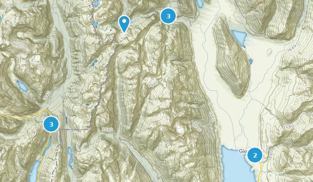 Glenorchy, Otago Region Birding Map