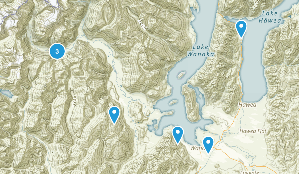Wanaka, Otago Region Birding Map