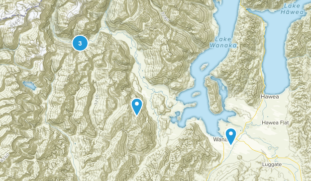 Wanaka, Otago Region Wildlife Map
