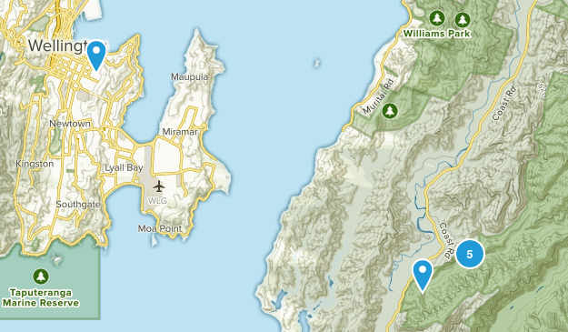 Eastbourne, Wellington Region Hiking Map