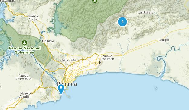 Beste Vogelbeobachtungswege in der Nähe von Panama-Stadt ...