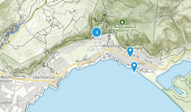 Hermanus, Westkap Bird Watching Map
