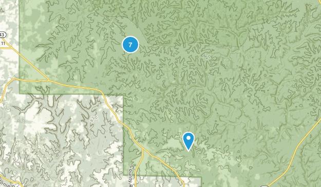 Double Springs, Alabama Birding Map