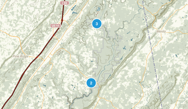 Fort Payne, Alabama Dogs On Leash Map