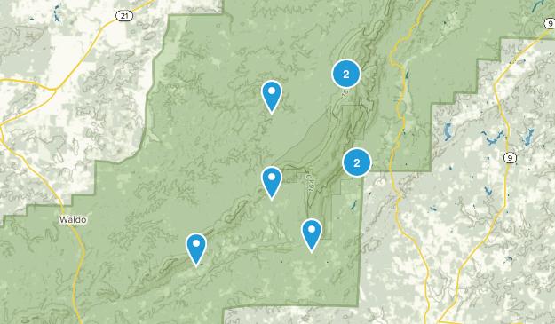 Lineville, Alabama Wild Flowers Map