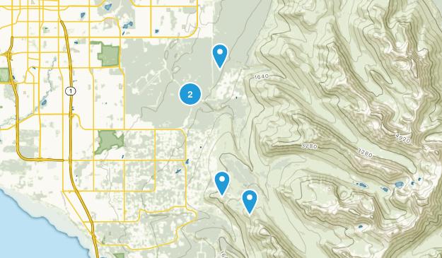 Basher, Alaska Birding Map