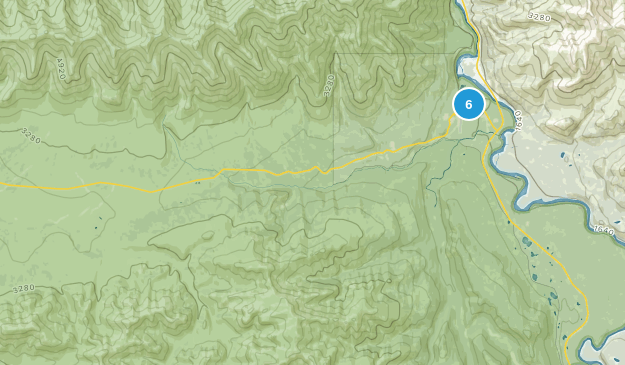Denali National Park, Alaska Forest Map