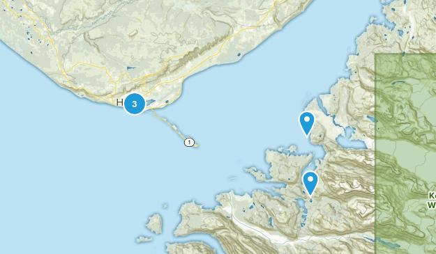 Homer, Alaska Dogs On Leash Map